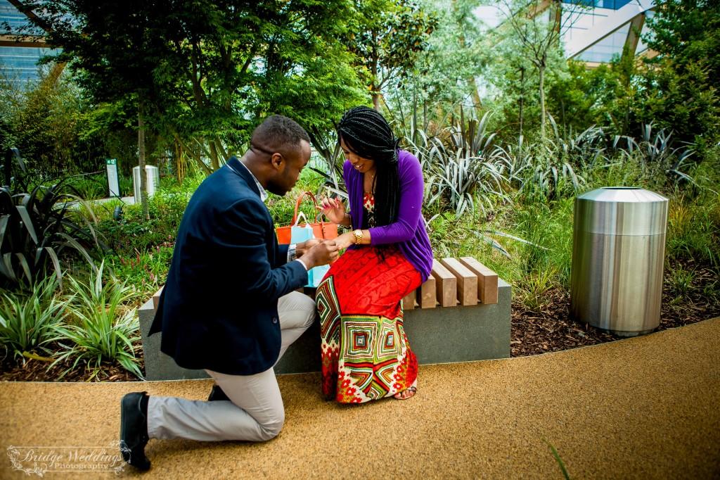 London Wedding Photographer - Wedding Proposal - BridgeWeddings - Canary Wharf Crossrail Place - Chioma and Isaac (17)